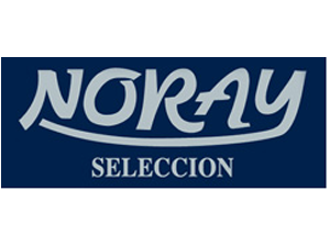 logo NORAY2